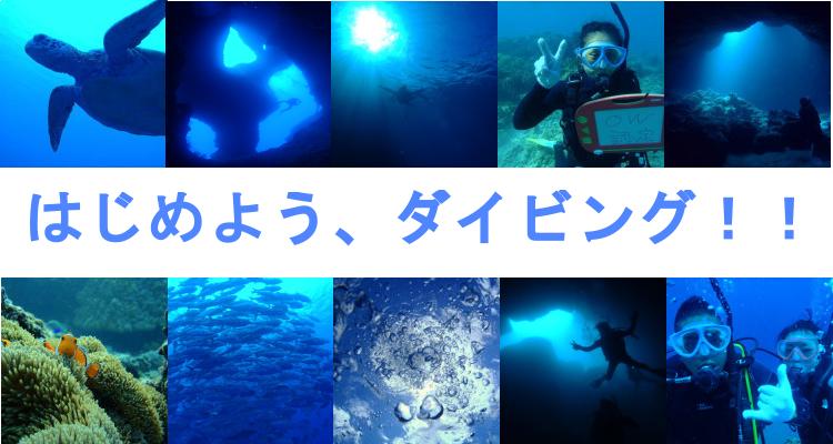 伊良部島 ダイビングライセンス
