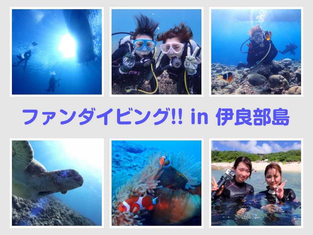 宮古島のとなり伊良部島 初心者様の専門店です。少人数制ダイビングショップでダイビングを楽しもう!