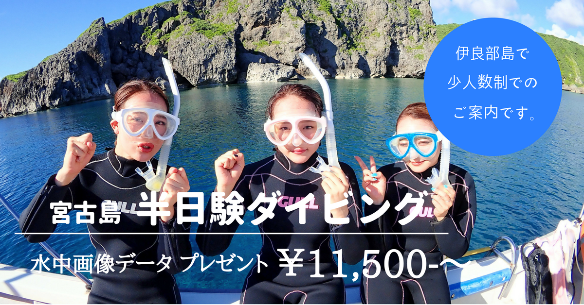 宮古島のとなり伊良部島でボート体験ダイビングを楽しもう!素敵な水中体験が待っています。水中画像データもプレゼントいたします。