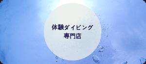 宮古島体験ダイビングの専門店