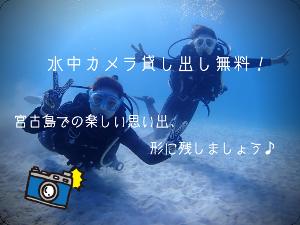 宮古島ダイビング思い出