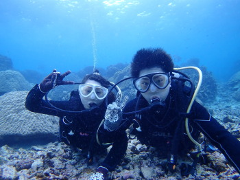 暖かい伊良部島。カイラのブログ