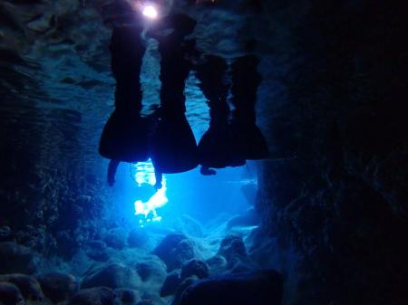 連日、青の洞窟に行けてます。