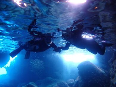 青の洞窟でシュノーケル~。