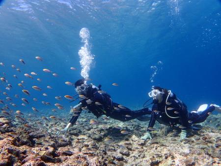 沖縄・宮古島旅行で初めての体験ダイビング。必要なモノやあると便利なモノってなに?