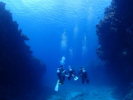 少人数でちょっと贅沢な、宮古島2ボート体験ダイビング!kailaのご案内。