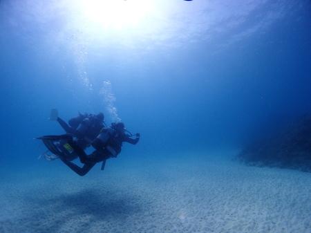 冬の時期も魅力がいっぱい!宮古島体験ダイビング。