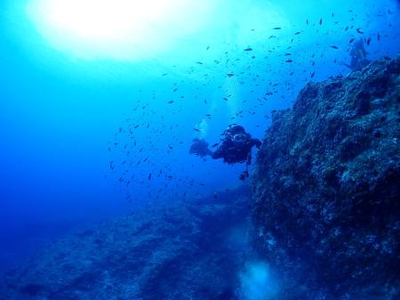 GWはkailaで体験ダイビング!5月の情報!