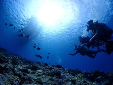 初めての方でも楽しめる、宮古島ダイビング!秋の9.10.11月おすすめ情報!
